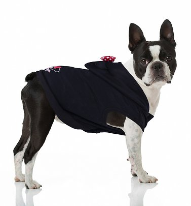 Disney Minnie Mouse Hoodie for Dogs