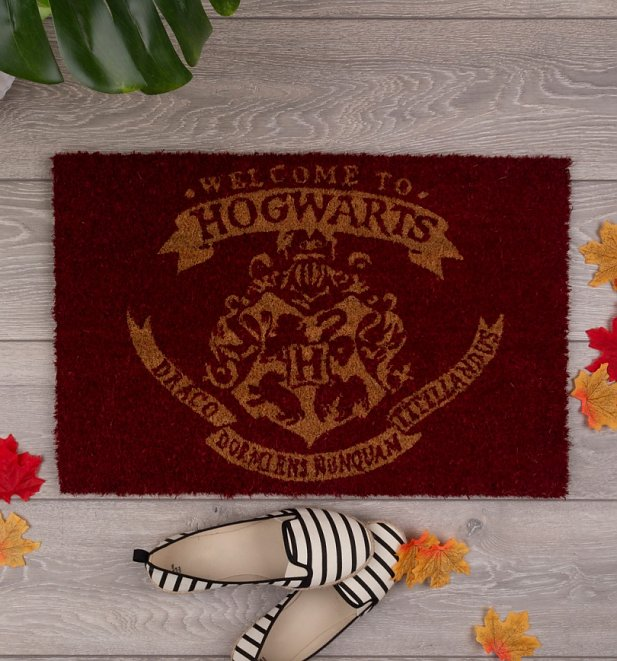 https://www.truffleshuffle.co.uk/product/22395/harry-potter-welcome-to-hogwarts-door-mat