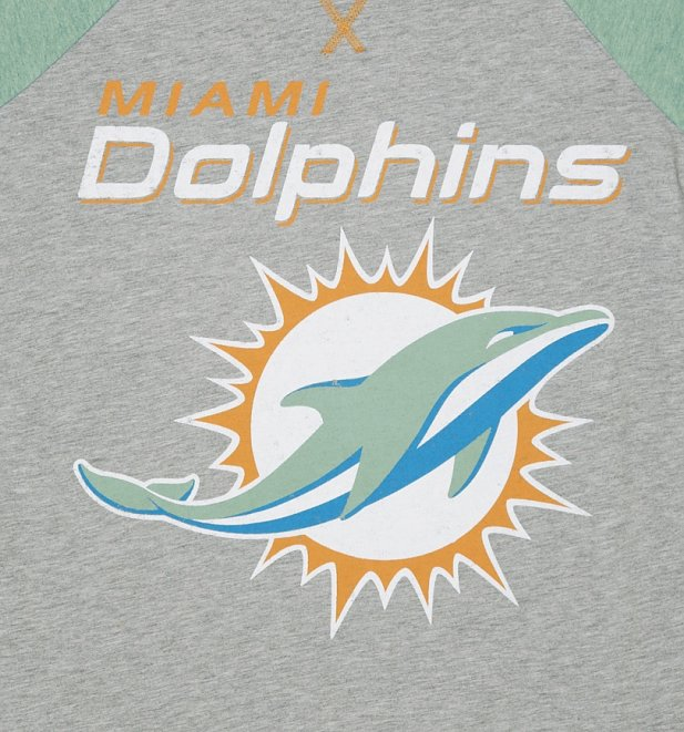 Men's Grey And Green Miami Dolphins NFL Raglan T-Shirt