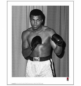 "Muhammad Ali Boxing Stance Photographic 11"" x 14"" Art Print"