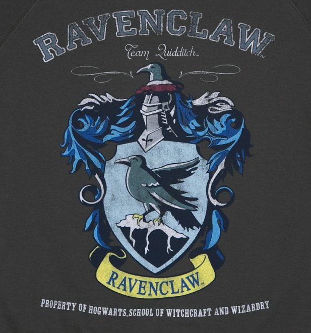 Harry Potter Ravenclaw Quidditch Team Damenpullover